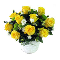 Emma - Yellow