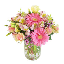 Sweet Perfection